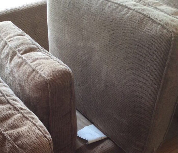 Upholstery Cleaning in Easthampton, MA After