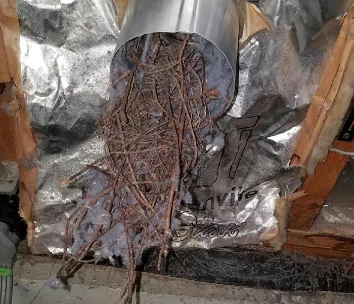 WHAT'S IN YOUR DUCT WORK