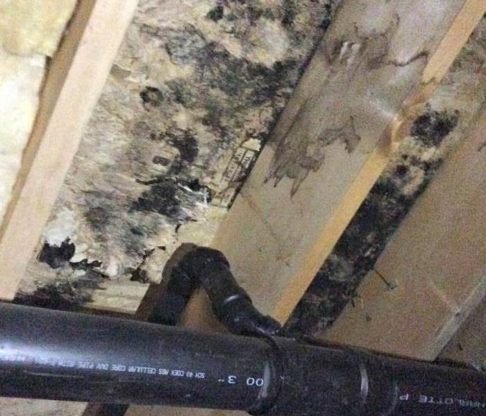 Mold Remediation IAQ Series - Part Three - Strategies For Improving Indoor Air Quality