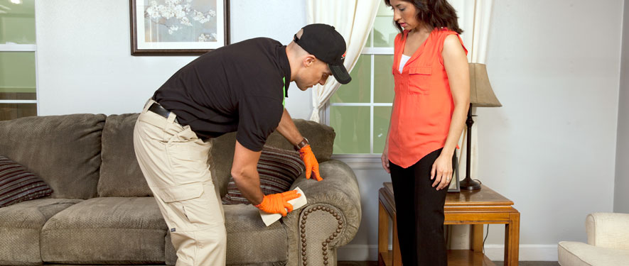 Northampton, MA carpet upholstery cleaning