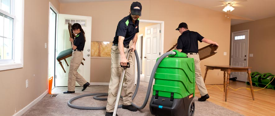 Northampton, MA cleaning services